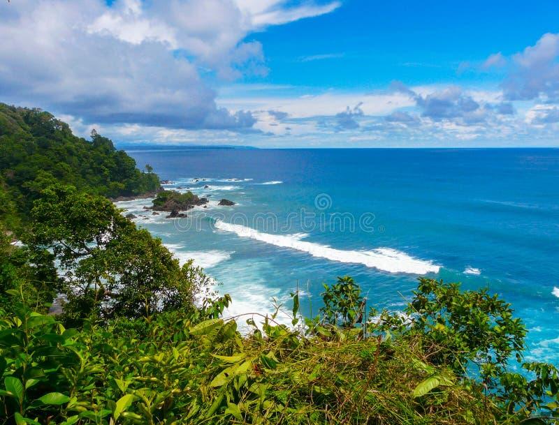 Corcovado National Park. Costa Rica stock photography