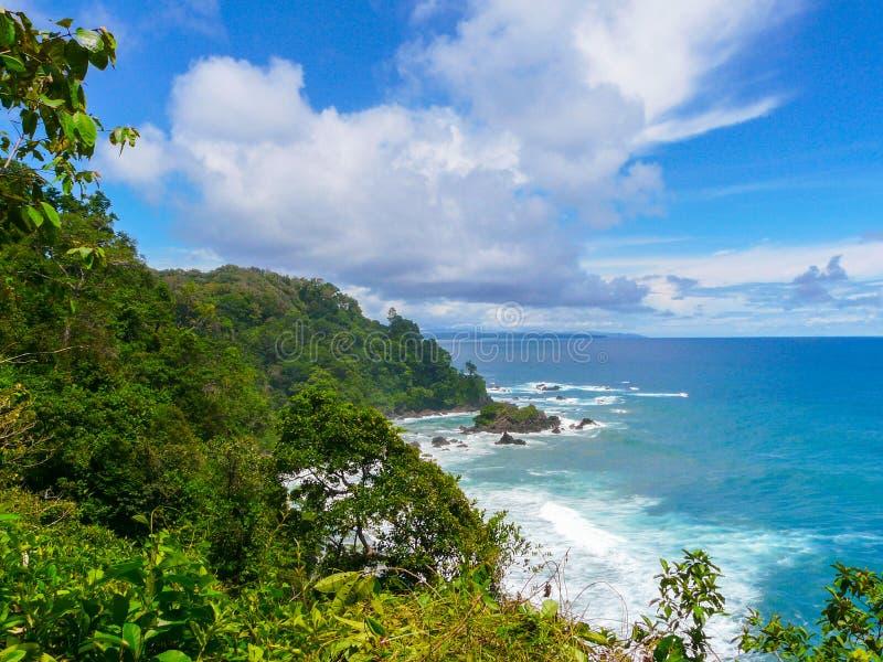 Corcovado National Park. Costa Rica royalty free stock photos