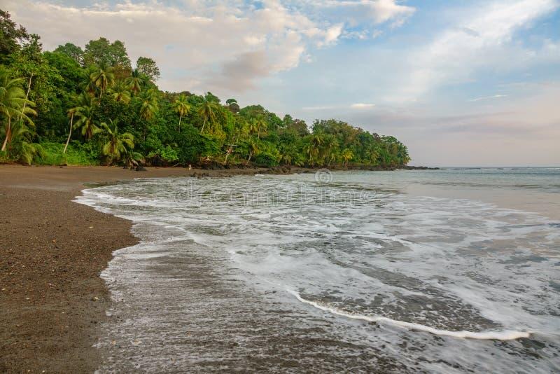 Corcovado park narodowy - plażowy widok z pokojowym oceanem fotografia royalty free