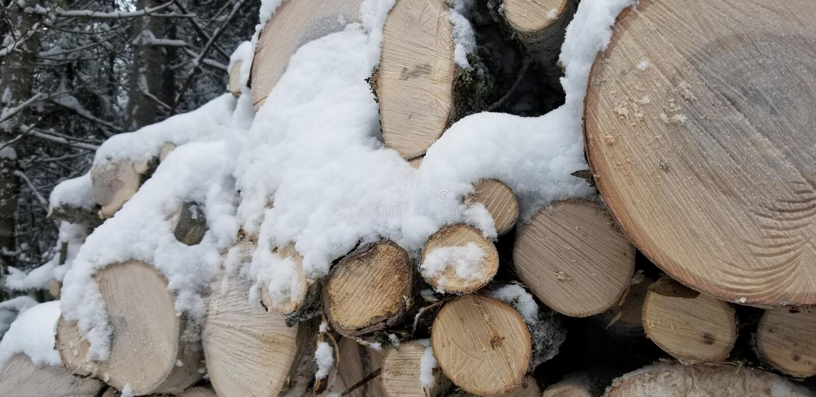 Cord of wood pile in the forest. Full of snow.  White winter. Wood log. Cord of wood pile in the forest. Full of snow stock photo