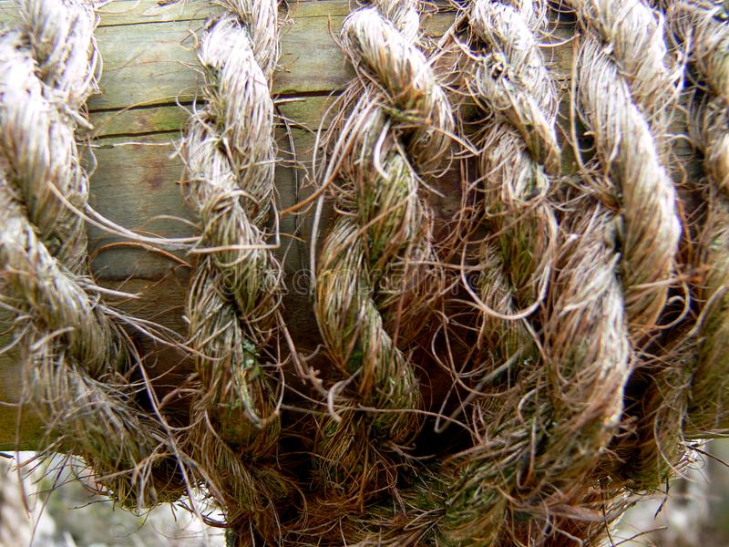 Corda acciambellata fatta delle fibre tessili naturali fotografie stock