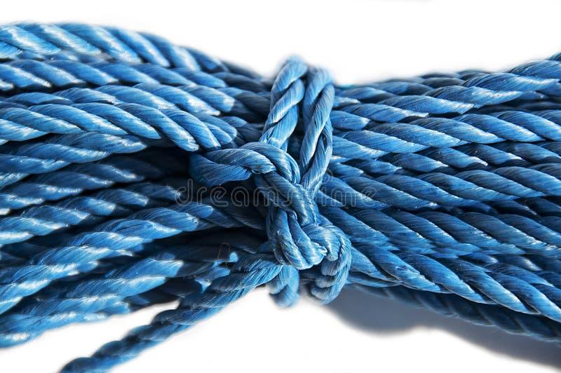 Corda blu legata fotografia stock