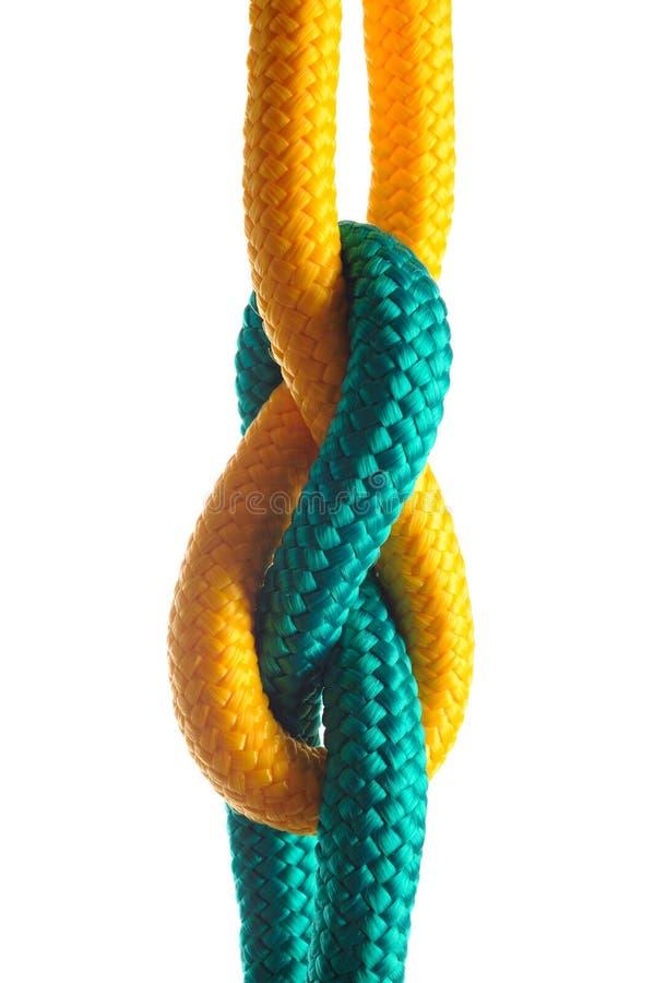 Corda con il nodo marino su priorità bassa bianca fotografia stock