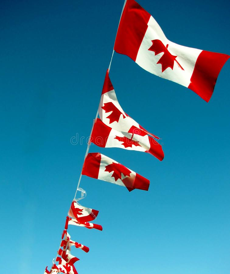 Corda de bandeiras canadenses contra o céu azul imagem de stock