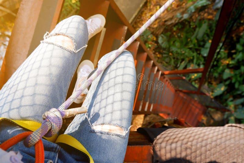 Corda de escalada Mulher do montanhista que veste no chicote de fios de segurança com corda do equipamento e que prepara-se para  imagem de stock