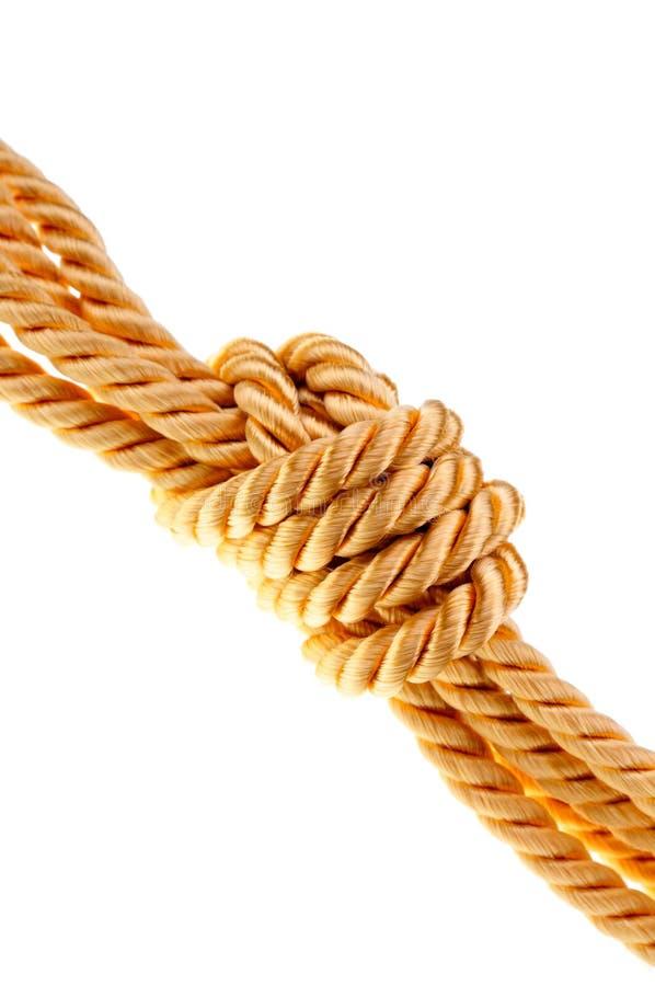 Corda dorata immagini stock libere da diritti