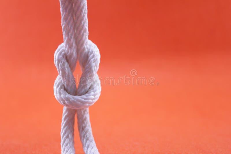 Corda e nodo fotografia stock libera da diritti