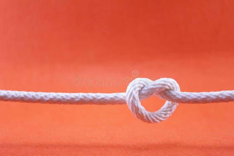 Corda e nodo immagini stock libere da diritti