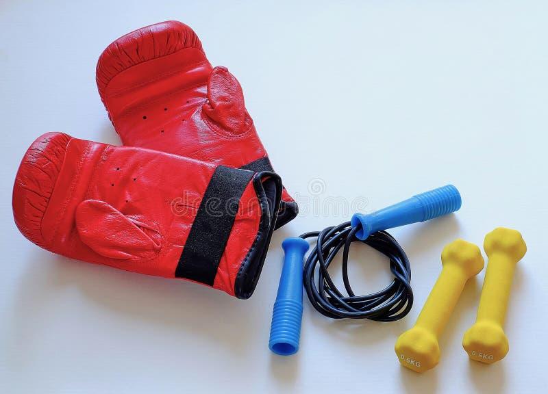 Corda e pesos de salto das luvas para o atleta do pugilista imagem de stock