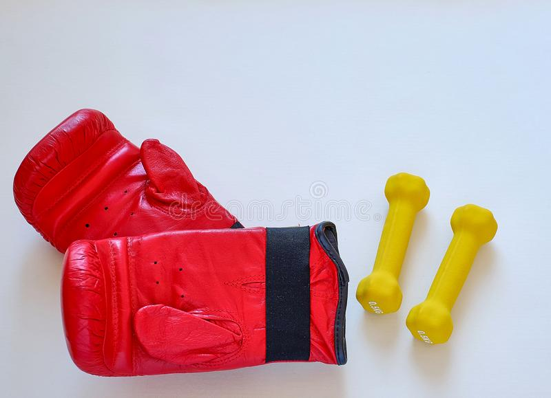 Corda e pesos de salto das luvas para o atleta do pugilista foto de stock