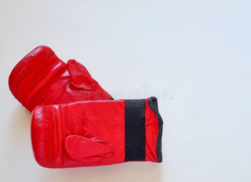 Corda e pesos de salto das luvas para o atleta do pugilista foto de stock royalty free