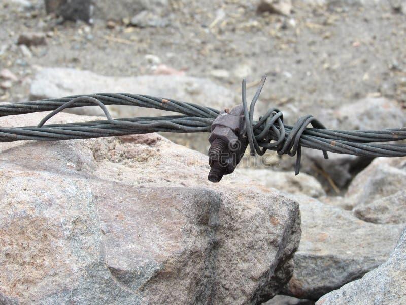 Corda rampicante arrotolata fotografie stock libere da diritti