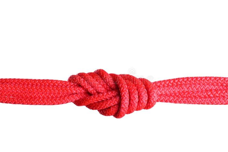 Cordas da cor com nó fotografia de stock