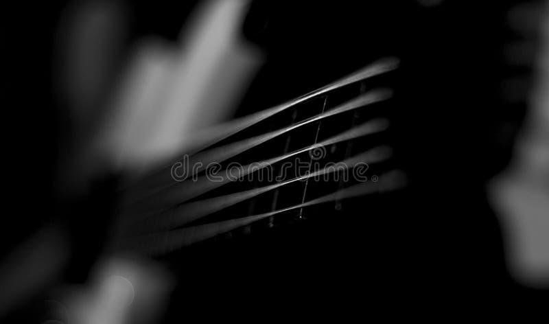 Cordas da guitarra-baixo imagem de stock royalty free
