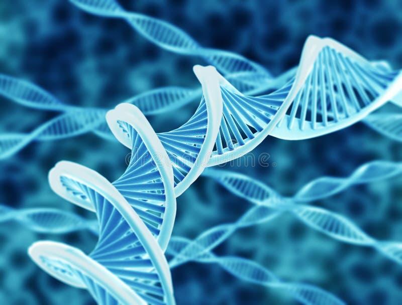 Cordas do ADN ilustração stock