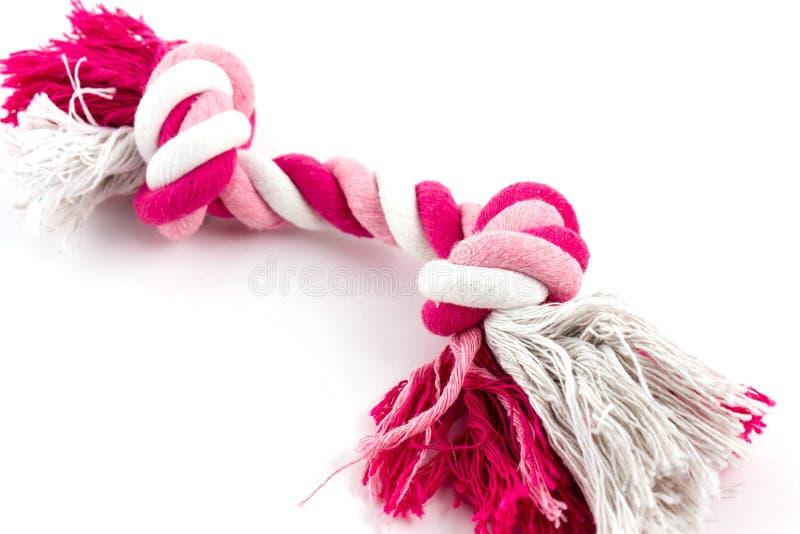 Corde de coton pour le jouet de chien image libre de droits