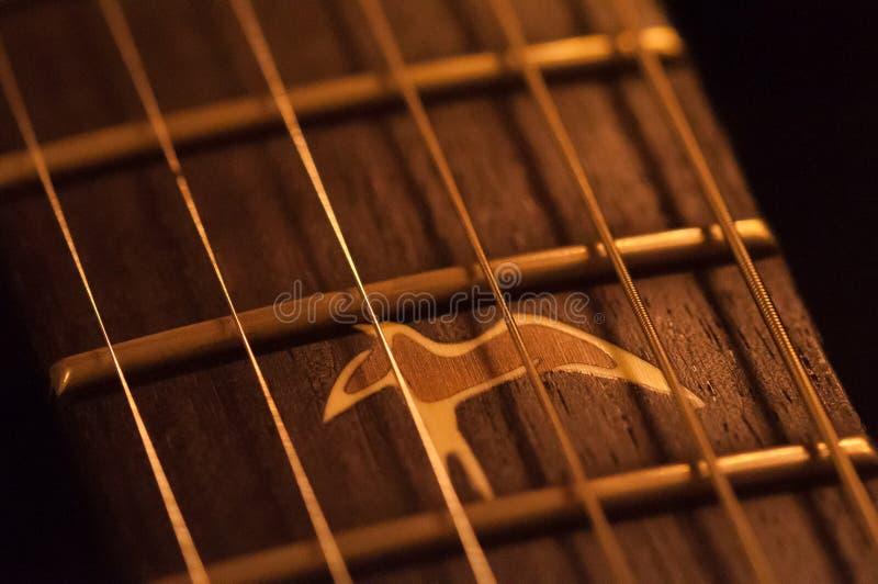 Corde del primo piano della chitarra acustica, tastiera immagine stock