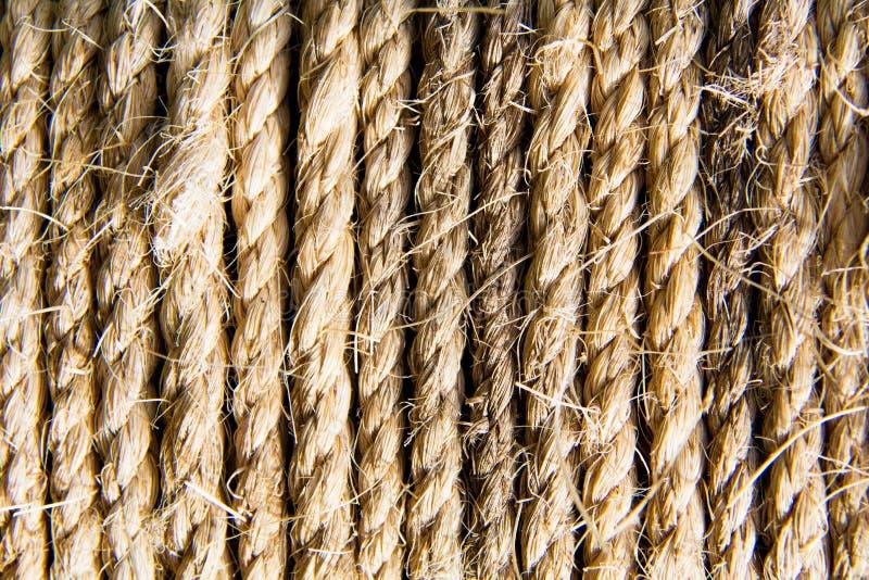 Corde tordue et lovée de fibre de chanvre image libre de droits