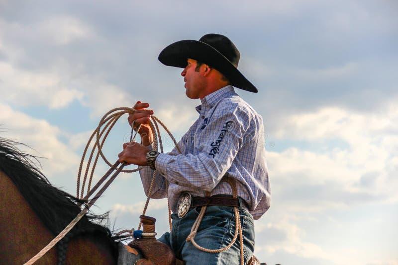 Cordelero profesional del becerro que lleva un sombrero de la camisa y de vaquero de Wrangler foto de archivo libre de regalías