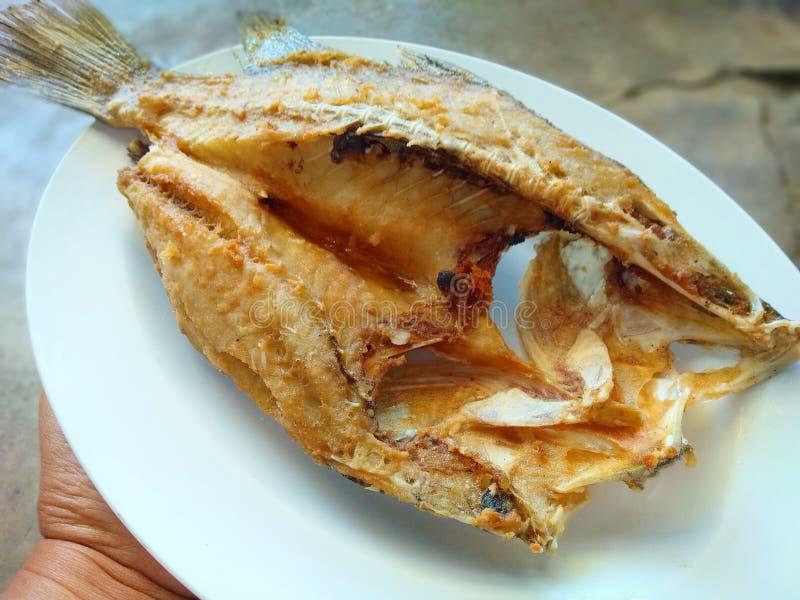 Cordelette cuite à la friteuse avec la recette de sauce à poissons photos libres de droits