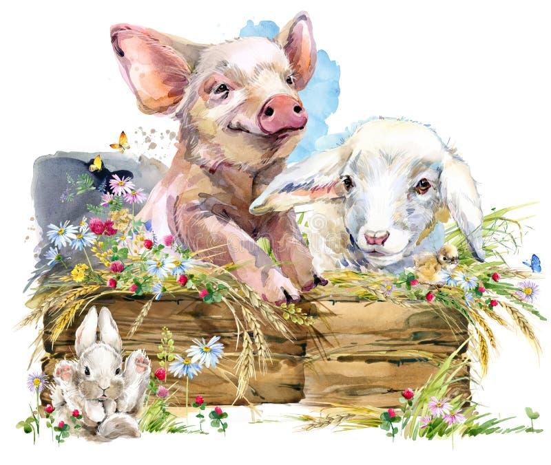 Cordero Cerdo lindo Chiken Conejo colección del animal de los campos de la acuarela stock de ilustración
