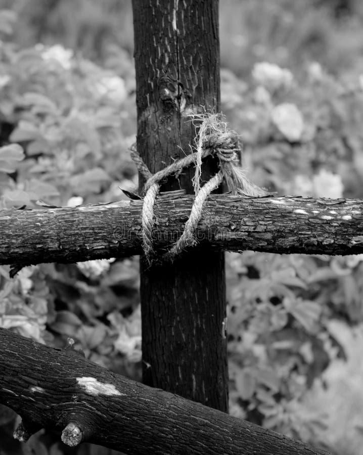 Cordicella annodata sul recinto del giardino fotografia stock libera da diritti
