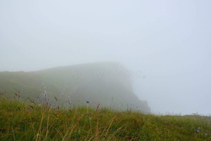 Cordilheira coberta com a grama verde com as pedras de projeção na névoa, wildflowers no primeiro plano imagens de stock