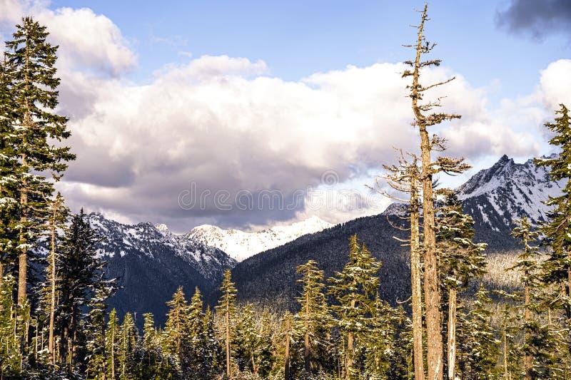 Cordilheira das Cascades do Norte fotografia de stock