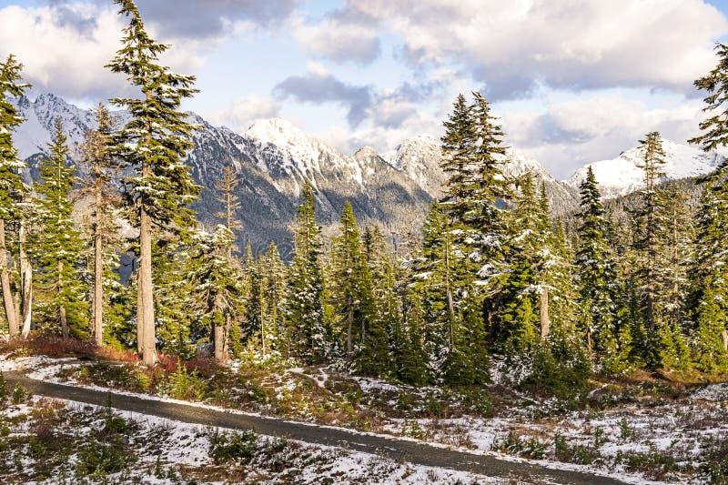 Cordilheira das Cascades do Norte fotos de stock