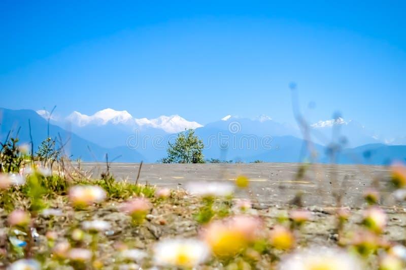 Cordilheira de Kanchenjunga da parte superior do heliporto de Pelling Vista cênico das montanhas, região de Kanchenjunga, Himalay fotografia de stock