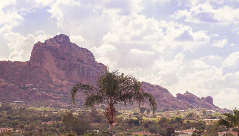 Cordilheira do Camelback dentro, Scottsdale imagens de stock royalty free
