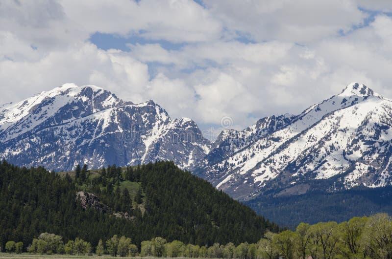 Cordilheira grande bonita de Teton foto de stock