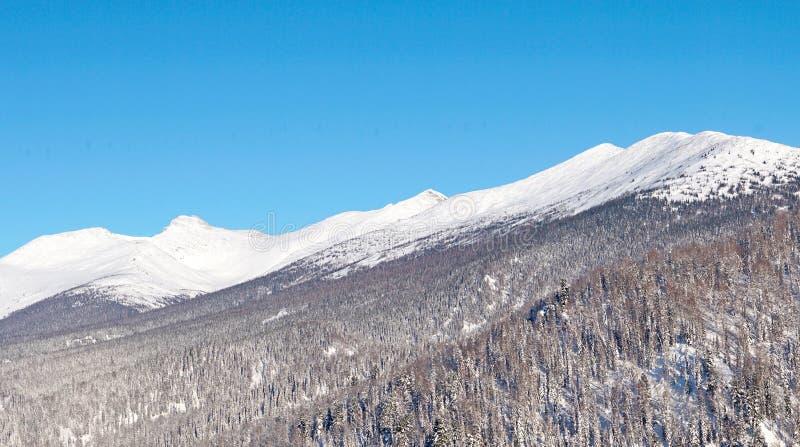 Cordilheira na neve contra o céu azul Sibéria, Rússia foto de stock