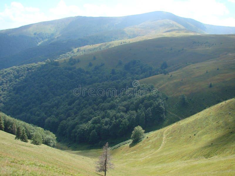 Cordillera de Borzhava de los Cárpatos ucranianos en la región transcarpática ucrania Verano 2016 imagenes de archivo