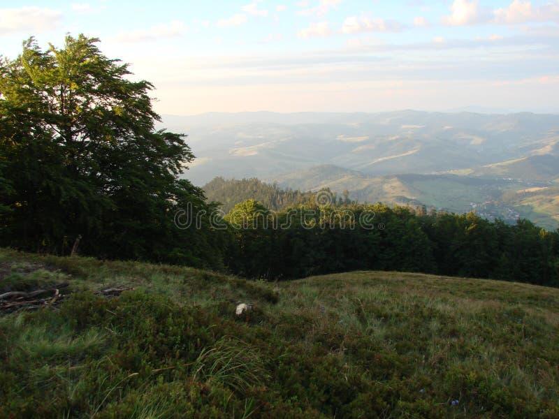 Cordillera de Borzhava de los Cárpatos ucranianos en la región transcarpática ucrania Verano 2016 foto de archivo