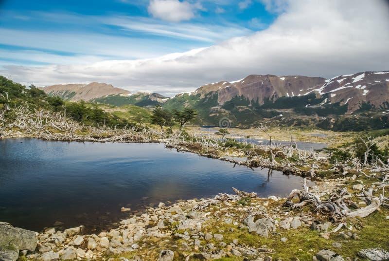 Cordillera de Navarino imagen de archivo