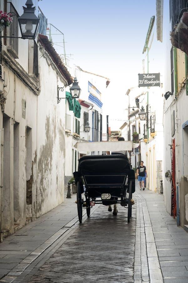 Cordoba Andalucia, Spanien: lagledare fotografering för bildbyråer