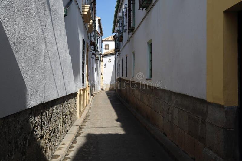 Cordoba gator på en solig dag arkivbilder