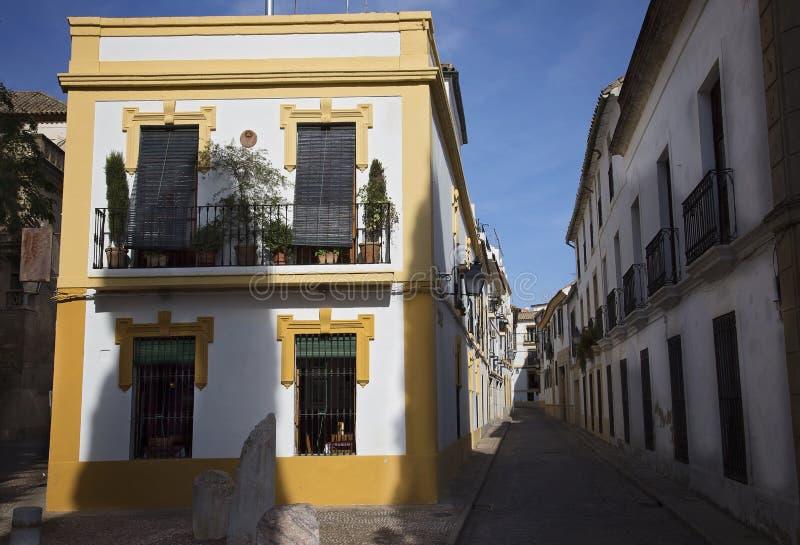 Cordoba gator på en solig dag arkivfoton