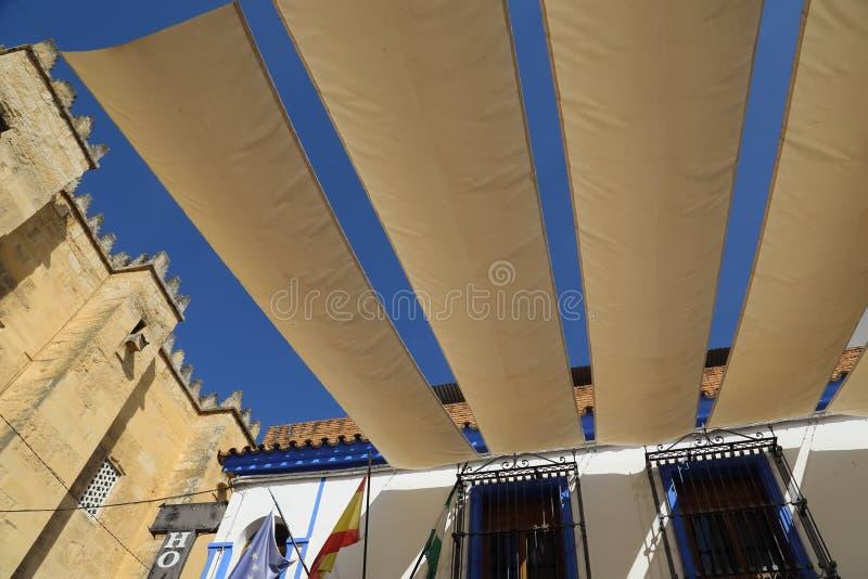Cordoba gator på en solig dag royaltyfri bild