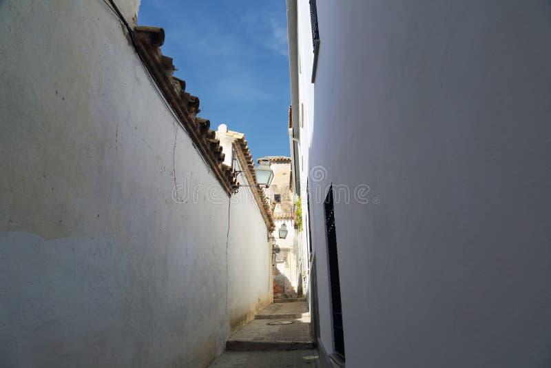 Cordoba gator på en solig dag arkivfoto