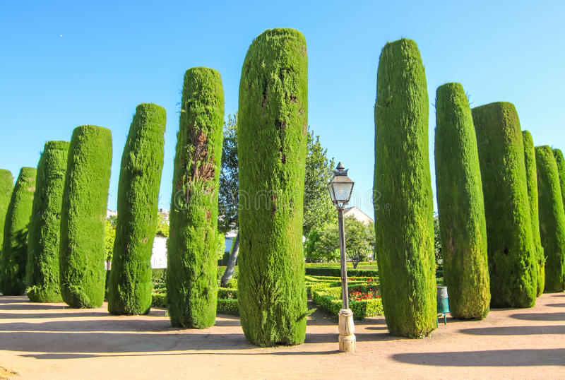 Cordoba Kings gardens. Green everywhere in Kings Castle Gardens at Cordoba, Spain stock photos