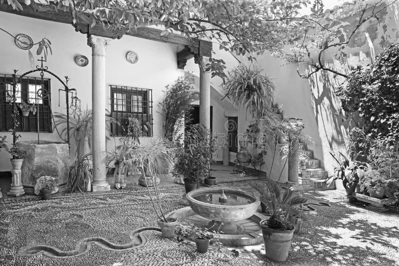 Cordoba - pacioen för treditonalgräsplangård av huscasaen de los Luna på fyrkanten för Plazade San Andres royaltyfri fotografi