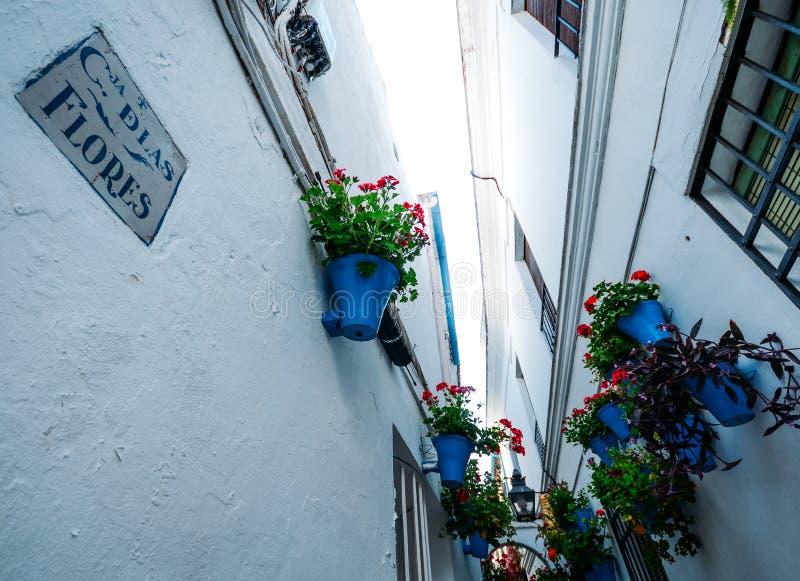 Calleja de las flores in Cordoba, Spain, Europe royalty free stock images