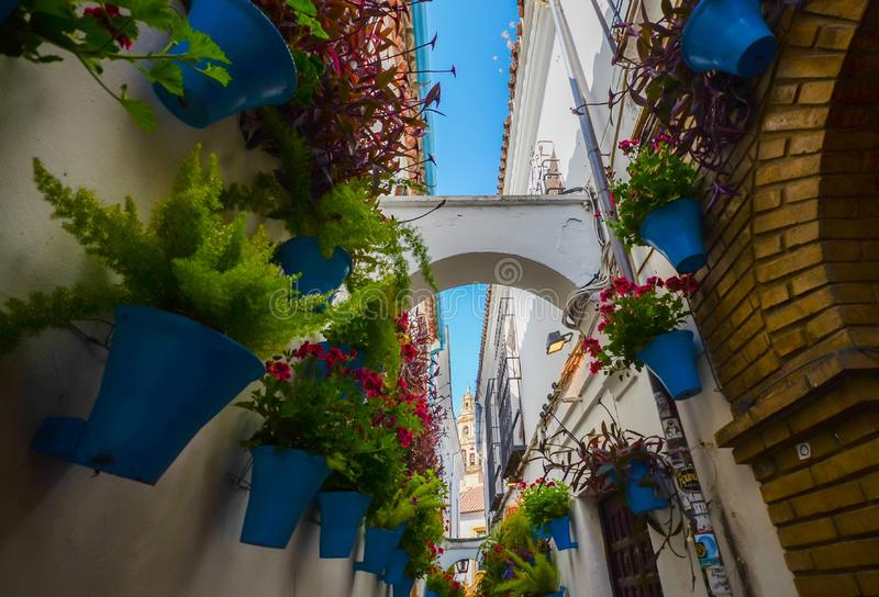 Cordoba, Spain. Calleja de las flores, view of the bell tower of the Cathedral royalty free stock photos