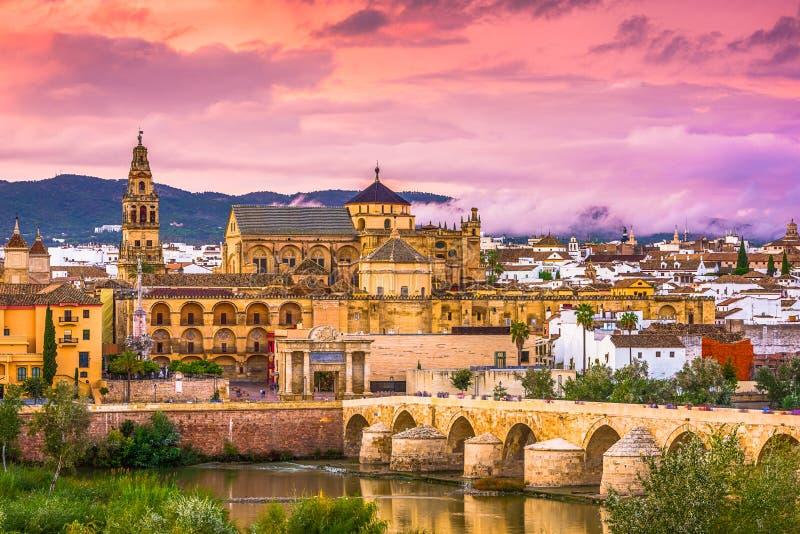Cordoba, Spain Skyline. Cordoba, Spain at the Mosque-Cathedral and Roman Bridge royalty free stock photos