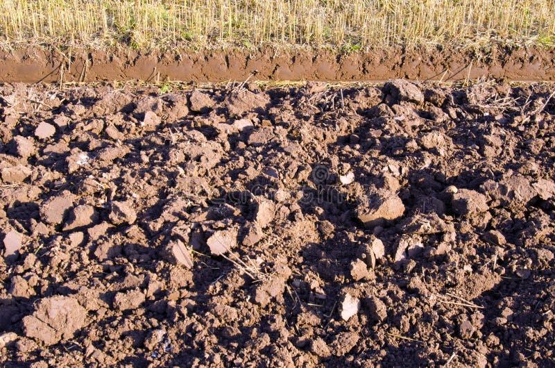 Cordon fertile labouré de fond de zone d'agriculture image libre de droits