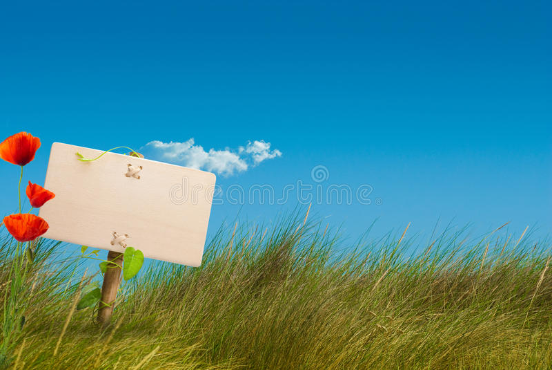 Cordon sauvage de signe vert - transmission amicale d'eco photos stock