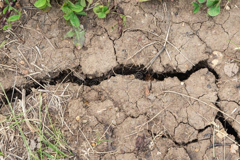 Cordon sec avec des fissures Fond du sol criqué de la terre photos stock