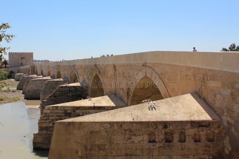 Cordoue, pont romain Le grand intérieur célèbre de mosquée ou de Mezquita à Cordoue, Espagne images stock